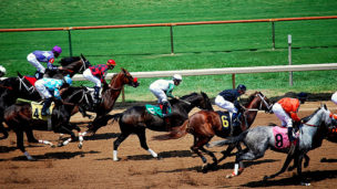 Horse Race - Louisiana Downs