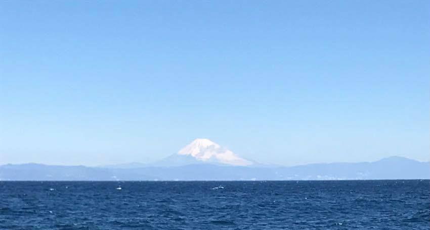 富士山が見える大島の福祉施設にてカウンセリングと講座を開催しました